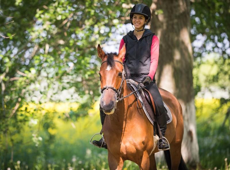 À cheval