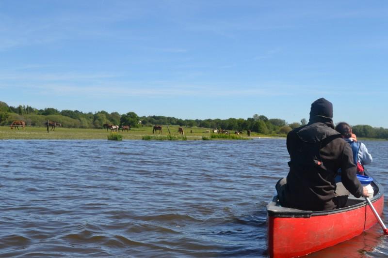 canoe sur le Brivet