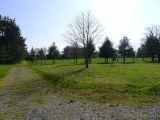 Aire naturelle de Forsdoff en Brière-Vue du camping sur champ avec ânes