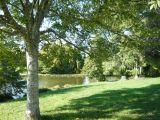 Camping les Platanes en Brière proche de l'axe Nantes Vannes