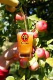 Cidre Kérisac Guenrouët - l'abus d'alcool est dangereux pour la santé