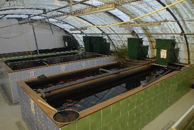Bassin Pisciculture Rélot