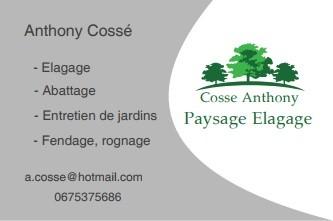 Cossé Anthony Paysage