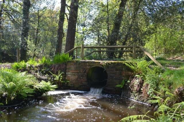 pont de la Barbotte