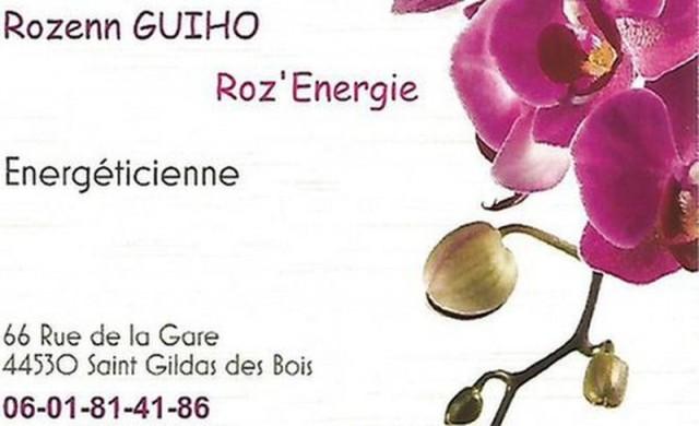 roz-energie-1618859