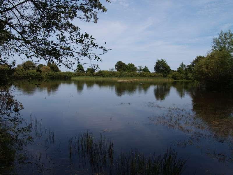 étang des landes de bilais