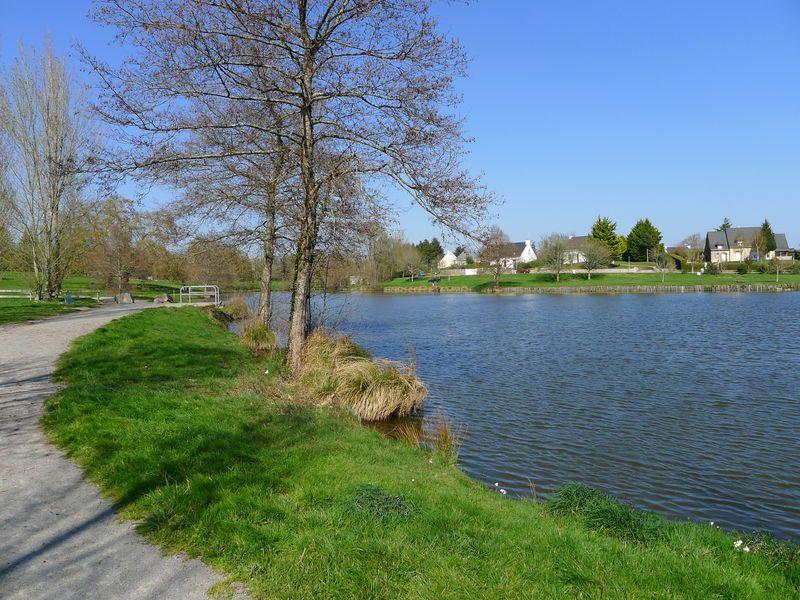 Vue générale de l'étang
