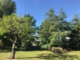 La Moussette La Baule_exterieur_jardin