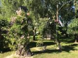 La Moussette La Baule_exterieur_jardin3