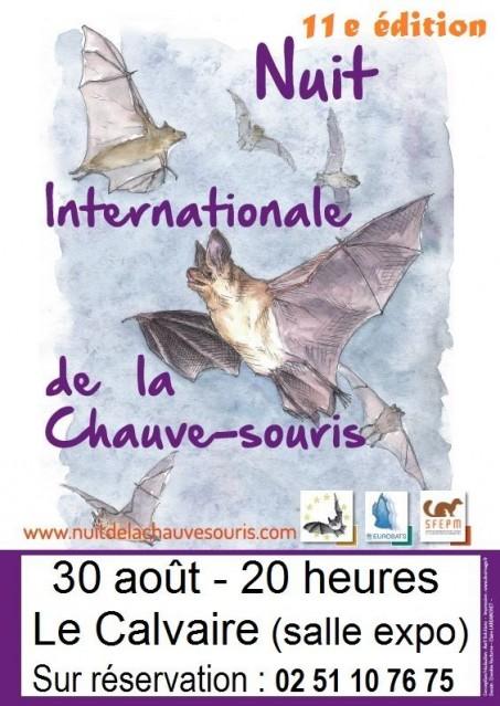 Nuit internationale de la chauve-souris à Pont-Château